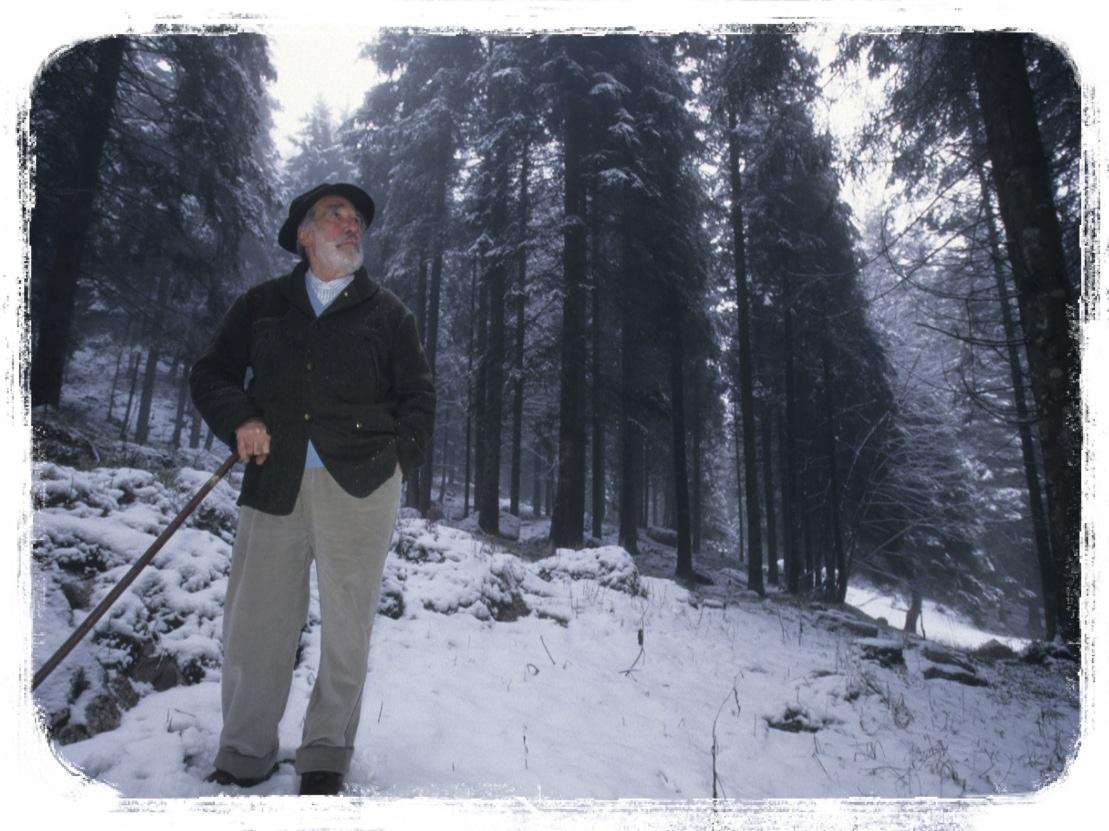 Mario Rigoni Stern nei suoi boschi