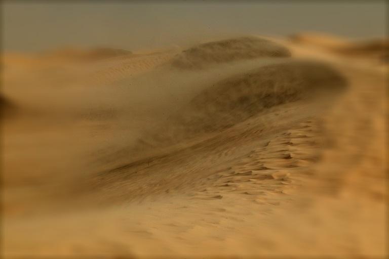 Una tempesta di sabbia n vigando for Colore vento di sabbia deserto