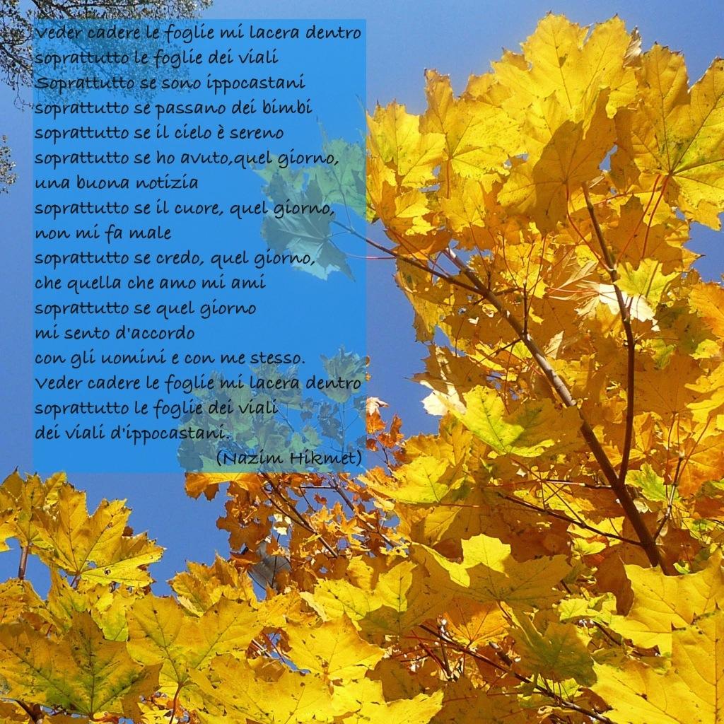 poesia di Nazim Hikmet