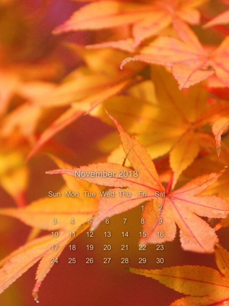 calendario di Novembre