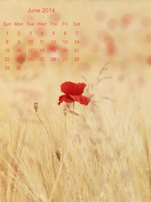 calendario di Giugno