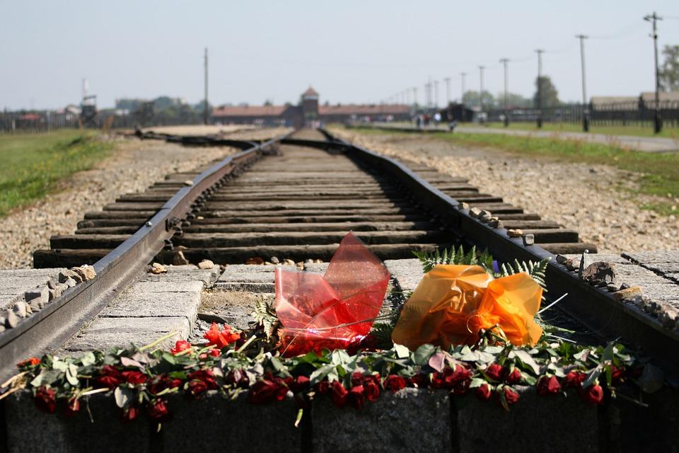 fiori Auschwitz